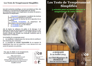 Flyer tests de tempérament Domaize